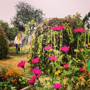 Volunteering With Garden School Foundation
