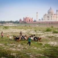 Apply Now For 2016 India Odyssey Program