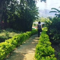 A Fresh Chapter Odyssey Program Expands To Costa Rica
